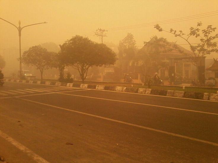 borneo, indonesia. today!