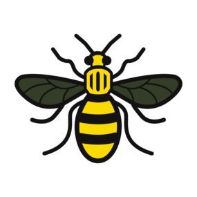 worker bee manchester - Google Search