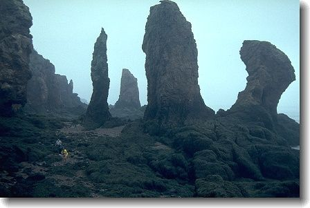 Cape Chignecto - try kayaking here!