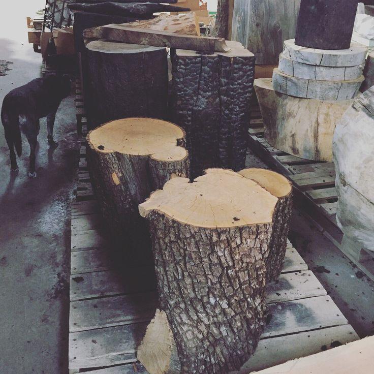 Tree Like Coffee Table: Best 25+ Tree Stump Table Ideas On Pinterest