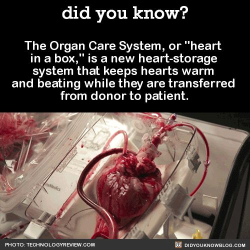 """This device allows surgeons to take hearts from donors that formerly wouldn't have been eligible. Possible donors have been limited because hearts were taken from people who were brain-dead but still had healthy bodies. The """"heart in a box"""" can..."""