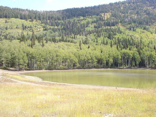 The hike to Forest Lake in American Fork Canyon is a 3.8-mile roundtrip up a trail best known for ATV and Jeep travel. The lake rests in a basin surrounded by trees and grasses. (Nate Carlisle   The Salt Lake Tribune): Jeep Travel, Lake Hikes, American Fork, Hiking Trails