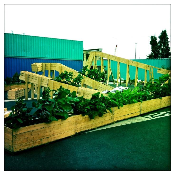 helsinki plant tram: Montaña Rusa, Plants Tram, Urban Gardens, Helsinki Plantram, Verde Ser, Helsinki Plants, Rusa Vegetables, Jardim Urbano, Arquitectura Natural