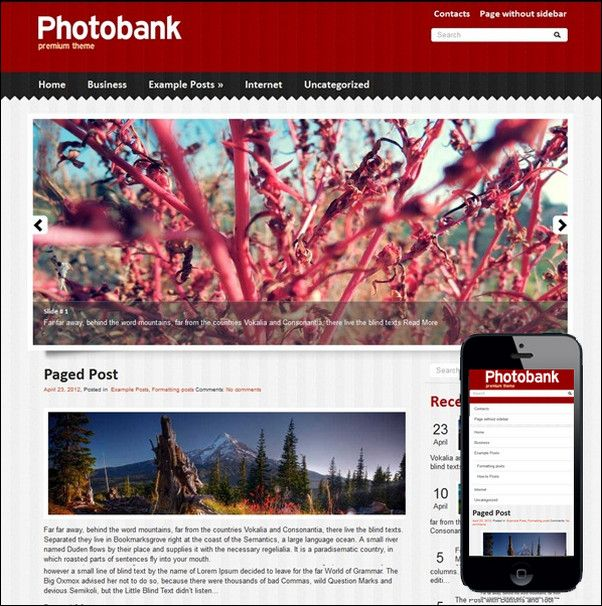 PhotoBank  PhotoBank is stylish and clean theme for WordPress blog. Its design is a perfect foundation for photo blog. The theme supports and comes with custom widgets, drop-down menus, JavaScript slideshow and lots of other useful features.