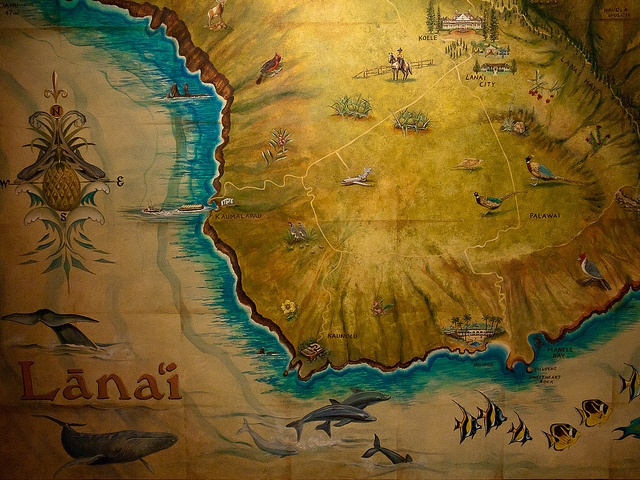 Hand drawn maps from the days of seafaring explorers are a nice way to add a little Motif Hawaii touch to your home.