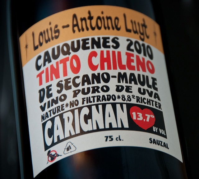 Cauquenes Tinto Chileno Carignan Sauzal 2010 by barrockmagazine, via Flickr