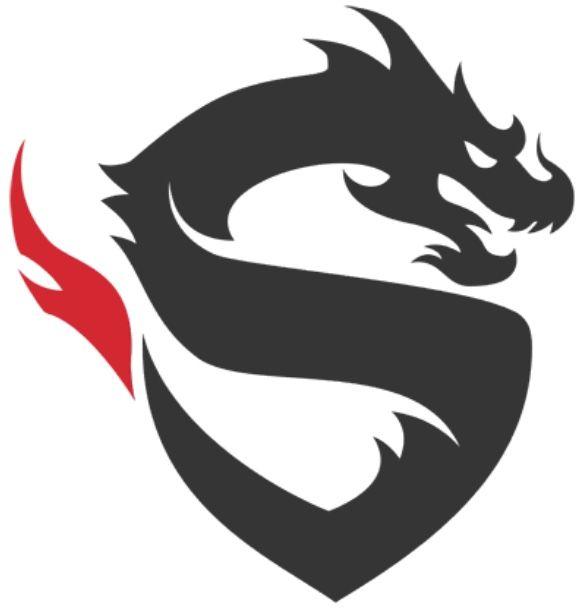 Shanghai Dragons Logo Logo Dragon Lion Tattoo Design Design Studio Logo