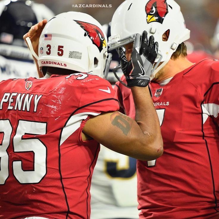 """4,157 Likes, 27 Comments - Arizona Cardinals (@azcardinals) on Instagram: """"Eli Penny scores his first #NFL TD."""""""