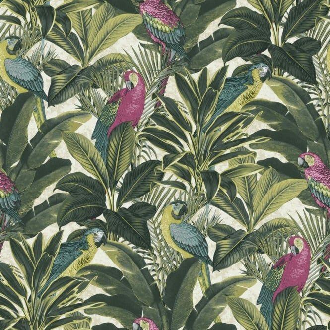 Grandeco Ideco Exotic Bird Pattern Parrot Motif Leaf Wallpaper A11504