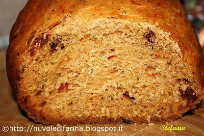 Pane con pomodori secchi e origano con la mdp