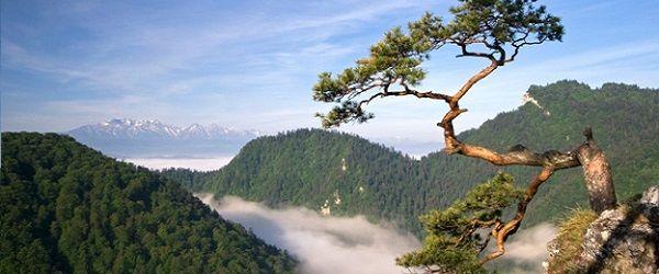 Szlaki turystyczne w Pieninach