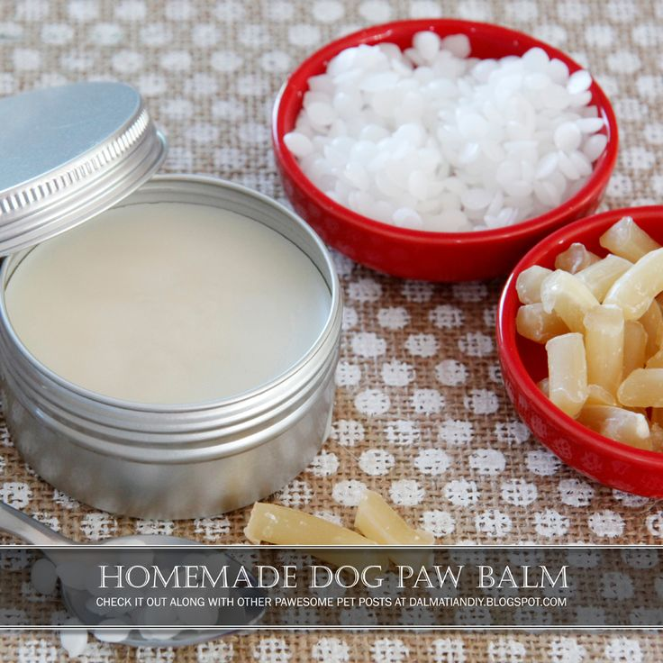 Homemade Natural Dog Paw Balm | How to make your own dog paw balm/salve/cream and customise creaminess for application.