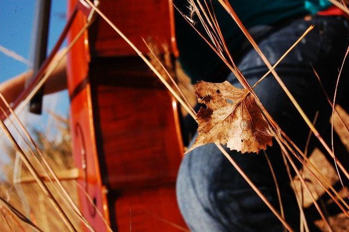 Autumn cello music