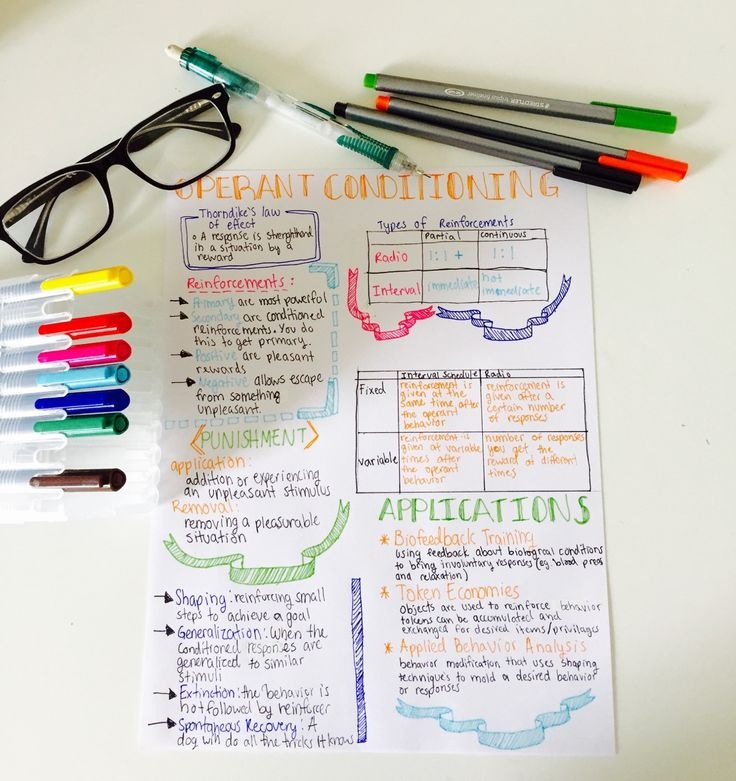 soniastudyblr:    4:36 pm   Finally finished my psych notes on operant conditioning!