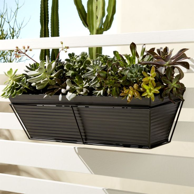 oscar matte black rectangular rail planter and rail frame -- this would be great for the front porch!