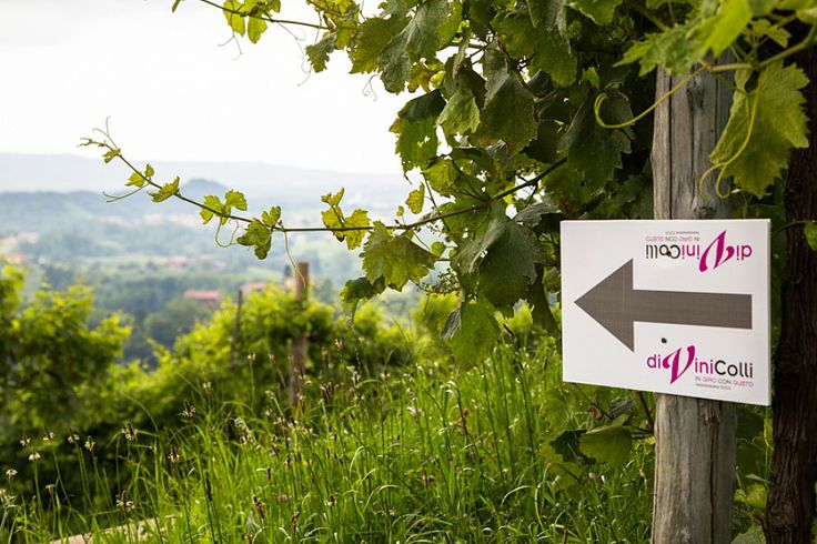"""On Sunday, June the 8th, will take place the second edition of the event DiviniColli, """"around with taste""""….  DiviniColli is a gastronomic trip through the streets of Valdobbiadene by bike or on foot…You can taste the local products in combination with some Valdobbiadene DOCG, including our EXTRA DRY, with moments of art, music and entertainment"""