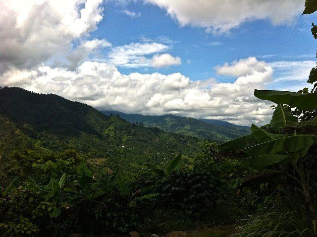 Lulu´s Diary: Diario de Costa Rica