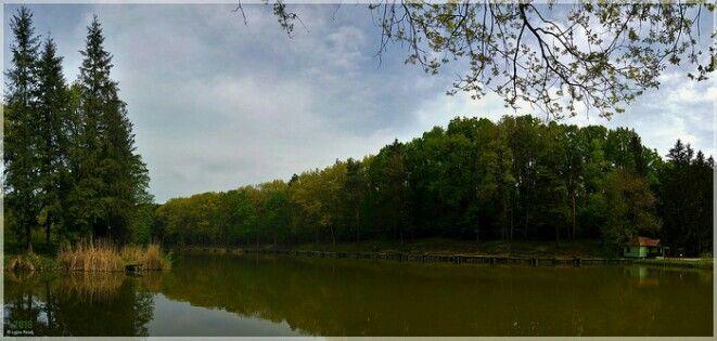 Csend a Tó Felett (Quiescence Over The Lake)