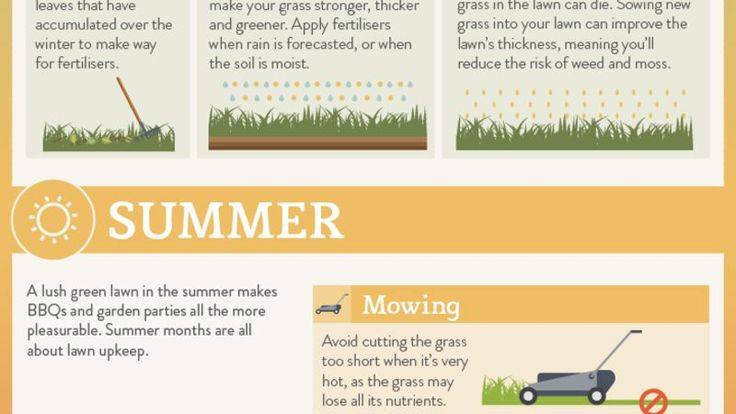 Act now to keep your yard in top shape!