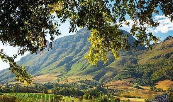 شامراوي غيم تمثل أروع المحميات الطبيعية في جنوب أفريقيا Natural Landmarks Natural Beauty Nature