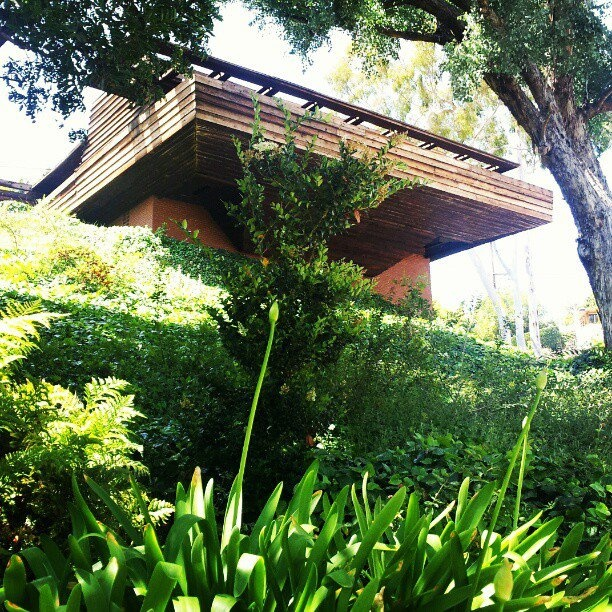 108 best images about Frank Lloyd Wright on Pinterest Blossoms
