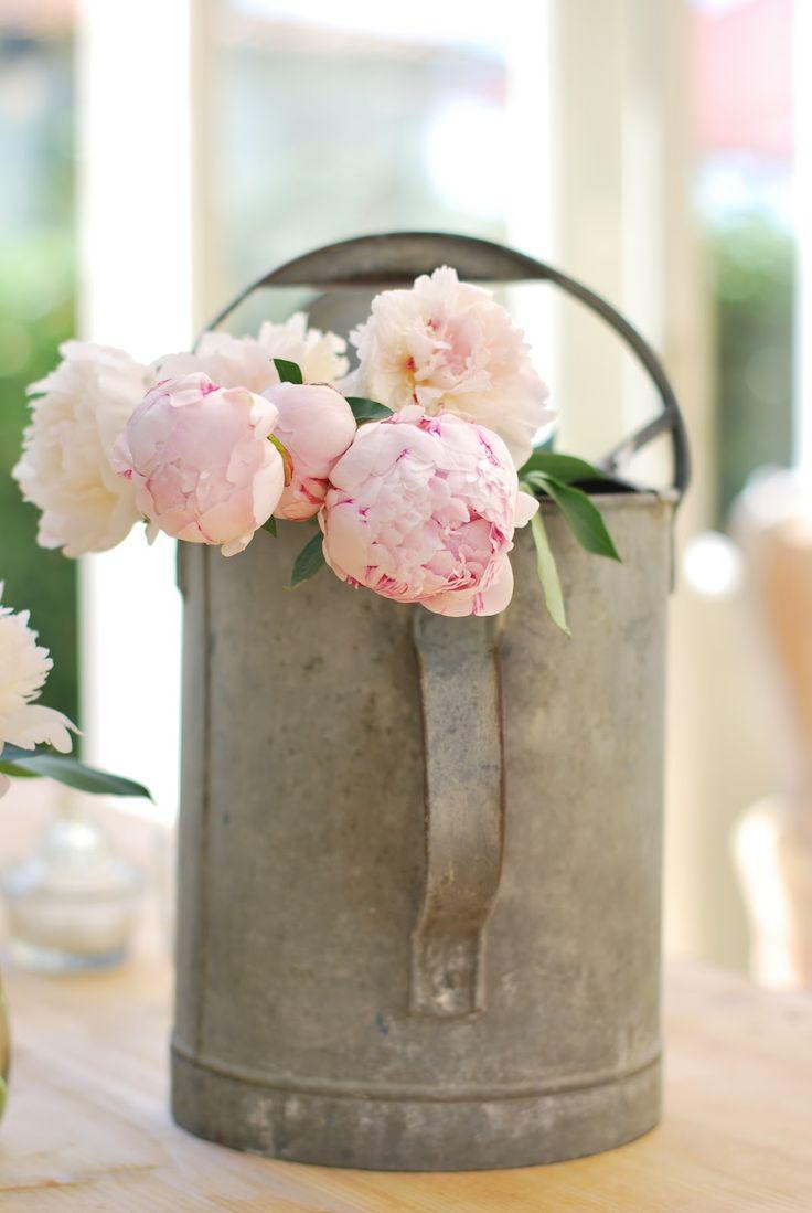 zinc y flores