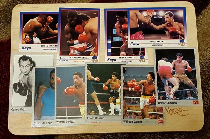PUERTO RICAN BOXING CHAMPIONS Lot of 10 Different Cards from 1991
