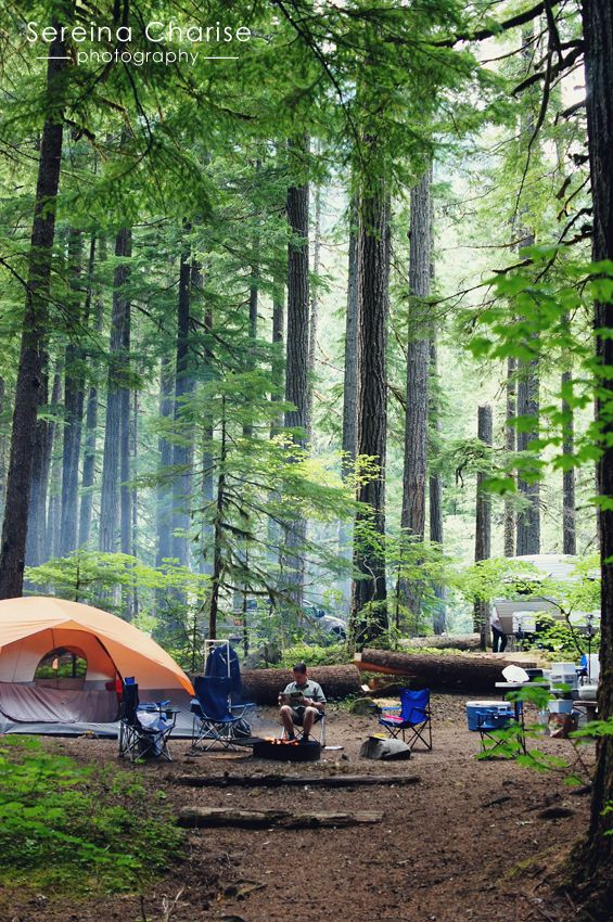 The Camp Site // Sereina Charise Photography