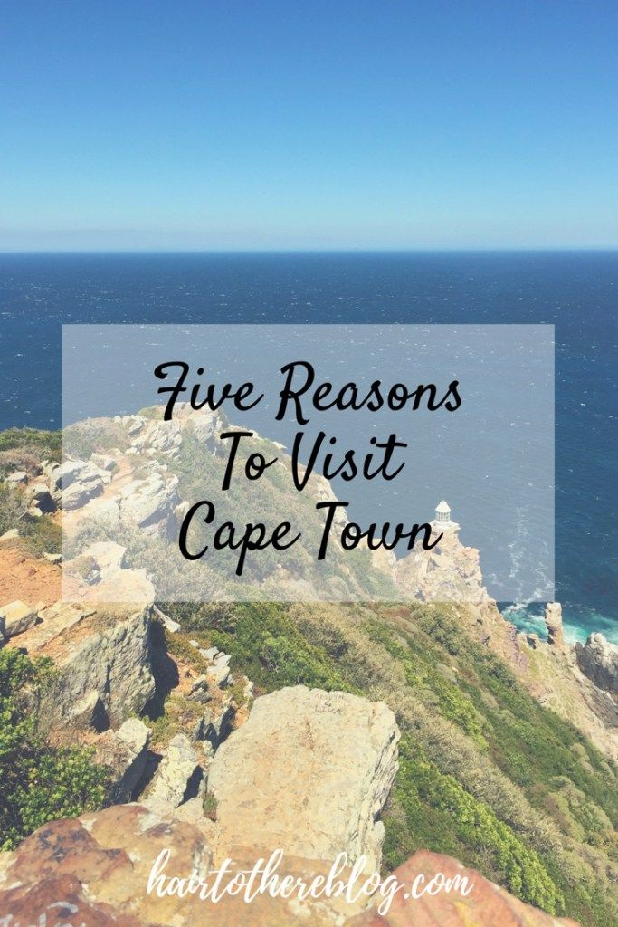 Five Reasons Cape Town is our 'Spirit City' From penguins to wine, we loved every second in Cape Town, South Africa! - hairtothereblog.com