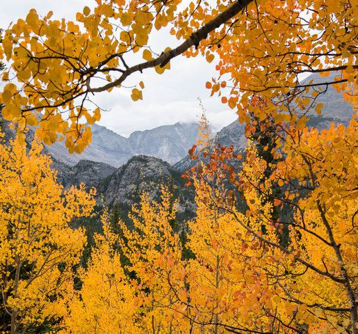 5 GREAT places to see the fall colors in Colorado right now including Kenosha Pass, Guanella Pass - 7NEWS Denver TheDenverChannel.com
