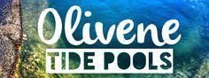 Hiking with kids: Olivine Tide Pools, Maui | WildWoodWay