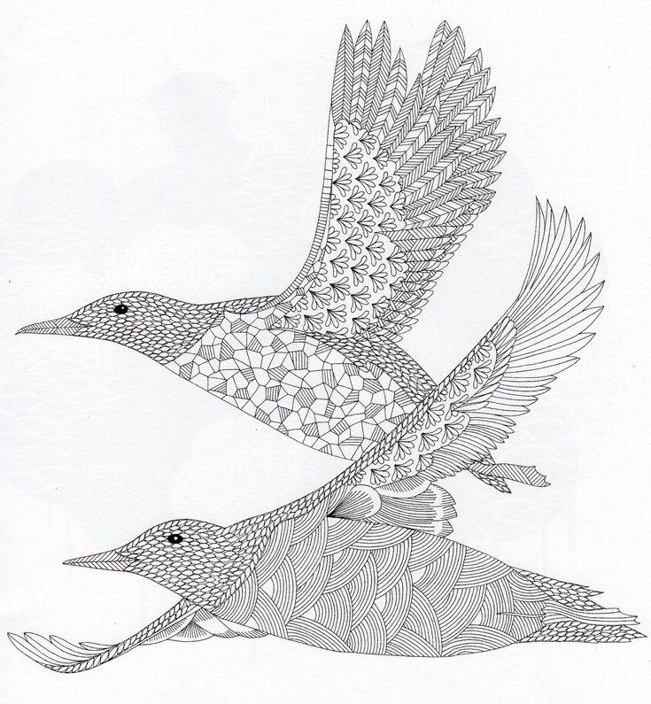 Millie Marottau0027s Animal Kingdom Bird
