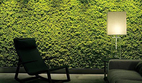 Paredes Verdes en edificios: Jardines Verticales