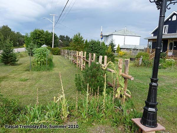 How to Build Cedar rail fences - Country fence - split rail fence. #fencing #garden. Instructions: http://www.usa-gardening.com/fence/split-rail-fence-4.html