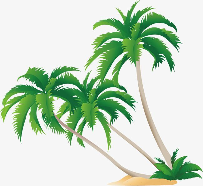 Green Coconut Tree Vector Coconut Clipart Tree Clipart Green