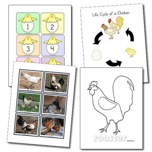 Hatching Chicks Learning Center Set - could be a possibility for the farm unit.
