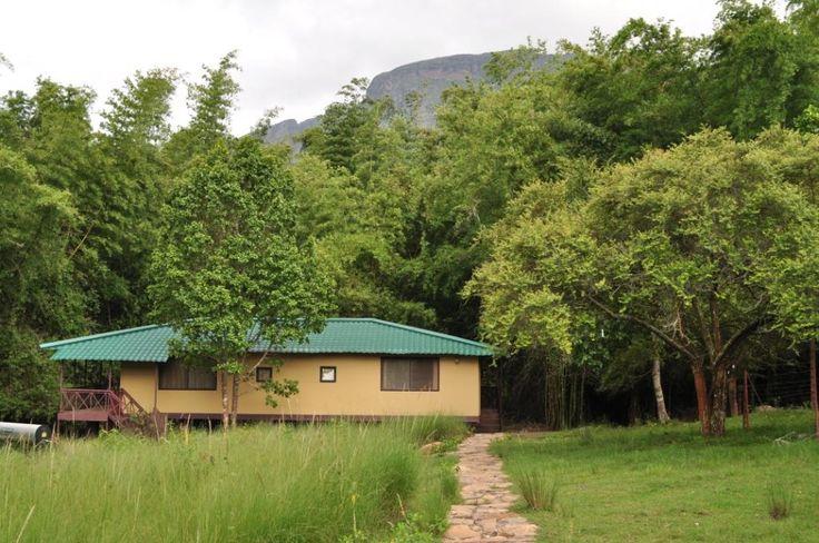 Independent cottage in jungle hut masinagudi tamilnadu