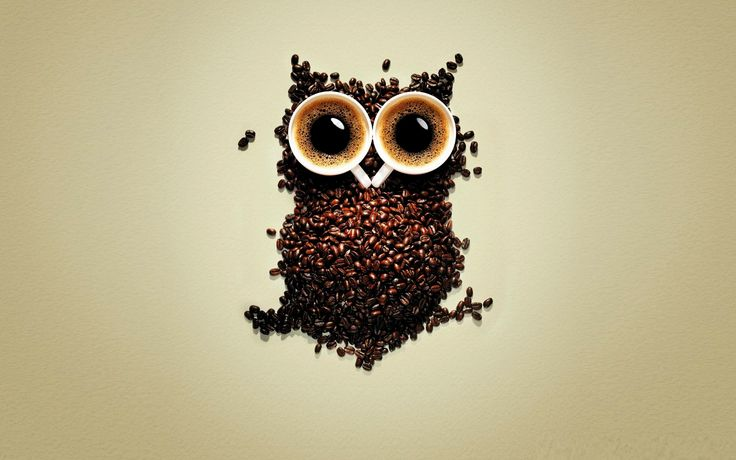 Funny Coffee Owl Wallpaper For Mobile. Download Desktop Background Wallpaper of Drinks in HD Widescreen High Quality Resolutions for Free at TheHDWall.com 37620