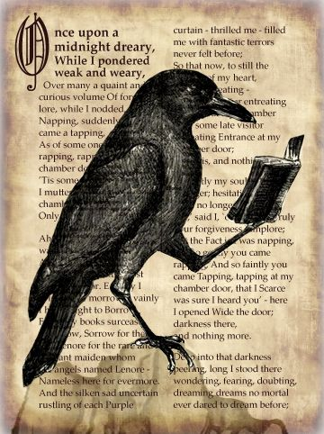 "a raven reading ""The Raven"" - by cb craig"