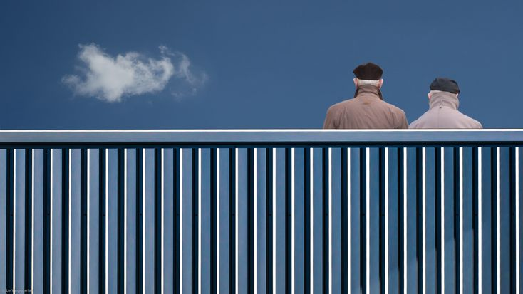 1x.com is the world's biggest curated photo gallery online. Each photo is selected by professional curators. The fence by Luc Vangindertael