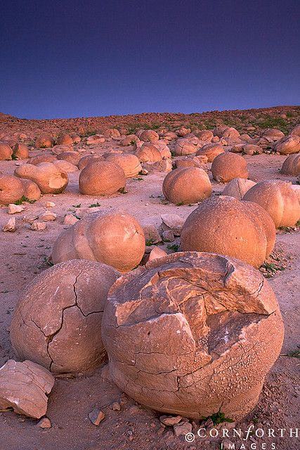 """The Pumpkin Patch"" rock formations at Anza Borrego State Park, CA."