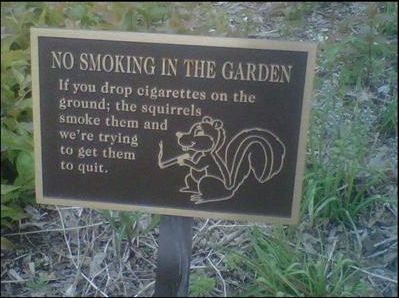 No Smoking In The Garden. If You Drop Cigarettes On The Ground, The  Squirrels