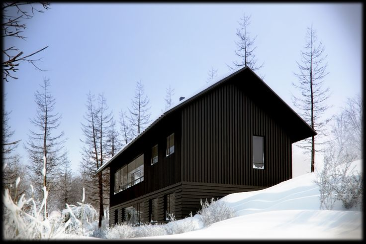 Modern Chalet (AKB Architect)