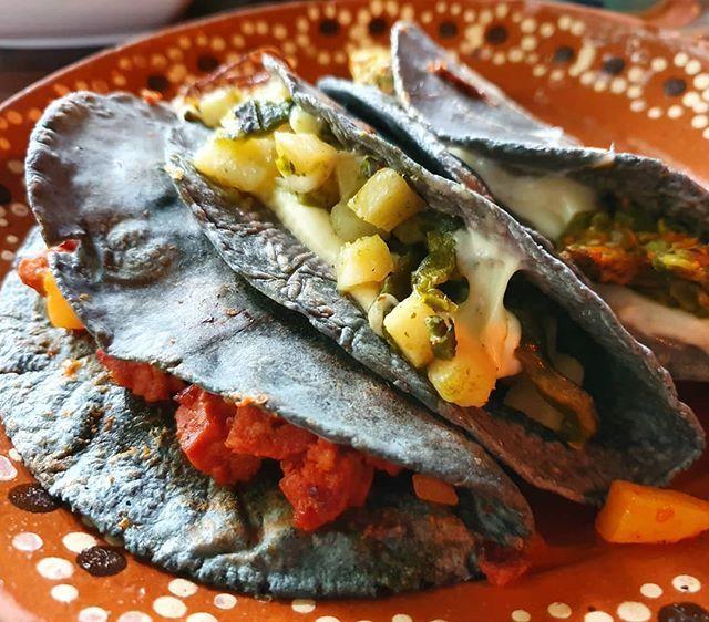 Quesadillas Con Y Sin Queso De Flor De Calabaza Huitlacoche Y Papas Con Chorizo En Maiz Azul Cdmx Papas Con Chorizo Comida Calabaza