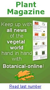 Plant Magazine of Botanical-online