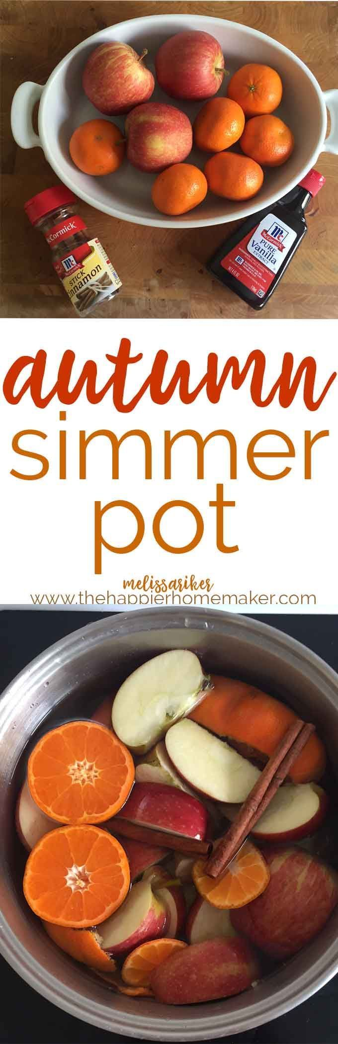 This Autumn Simmer Pot will make your home smell just amazing! Get this brewin' for a festive fall party.