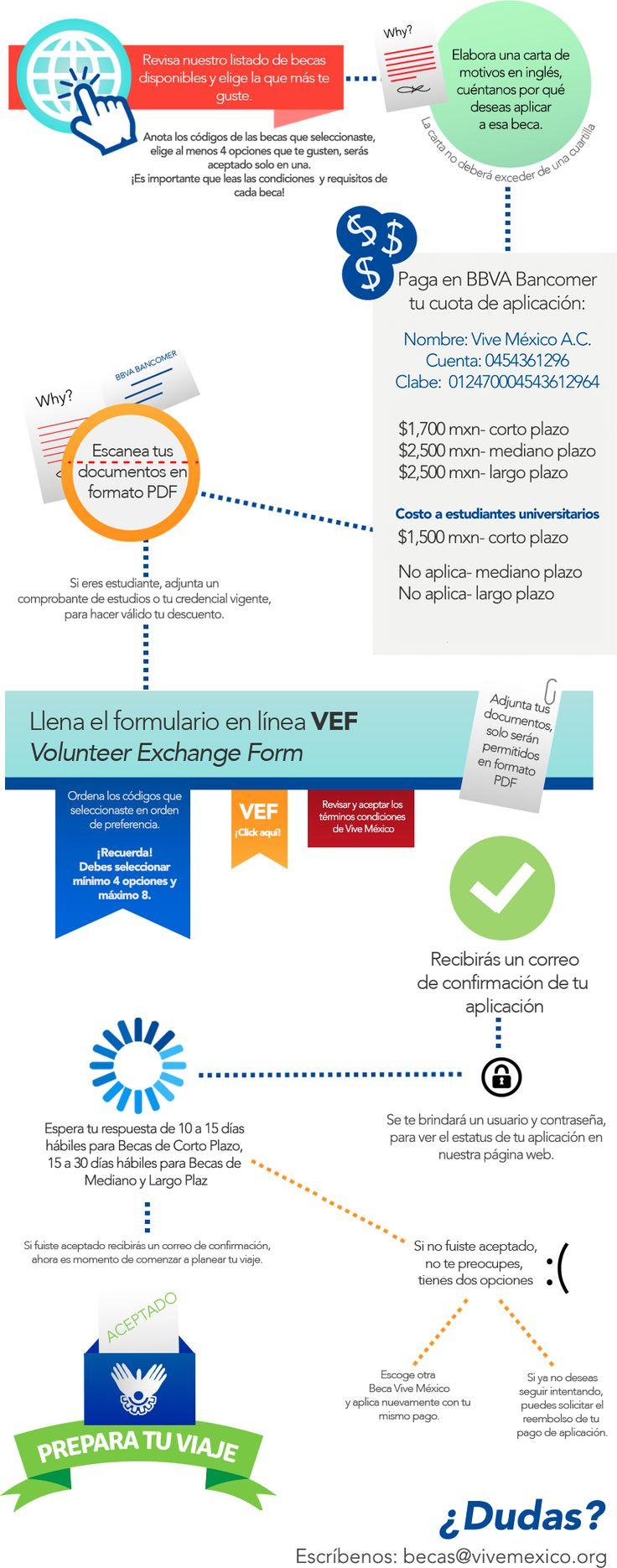 ::Becas Internacionales Vive México::