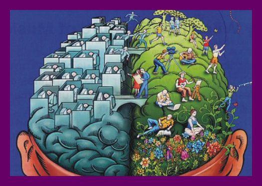 Azt mondják, hogy az intelligencia annak függvénye, hogy milyen sűrű a két agyfélteke közti idegpálya-összeköttetés. Azaz: mennyire képes együttműködni a bal és a jobb felünk, hisz mindegyik máshoz ért leginkább.A bal agyfélteke racionális és logikus. Elemez minden beérkező információt, hipotézisekkel dolgozik, eltervezi és végrehajtja a problémamegoldás egyes lépéseit. Van időérzéke, kritikus és tárgyilagos. Itt található a beszédközpont, amely feldol