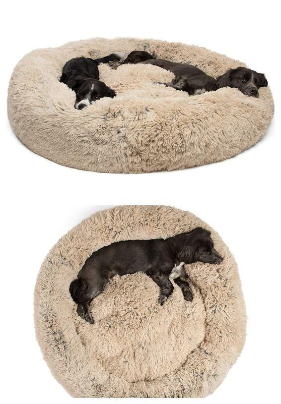 Giant Donut Cuddler Dog Bed Mascotas S A