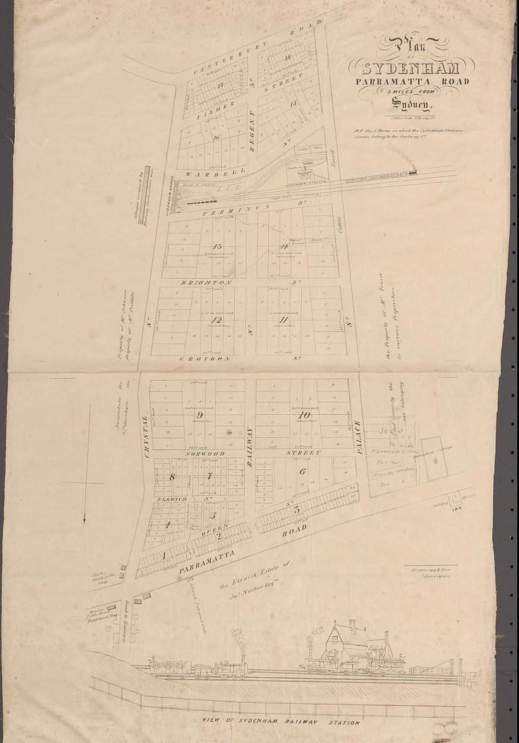 Plan of Sydenham [Petersham], Parramatta Road, 3 miles from Sydney, c1855 | The Dictionary of Sydney